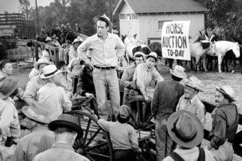 Cinemascope Blogathon: The Long, Hot Summer